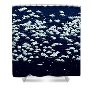 Frost Flakes On Ice - 25 Shower Curtain