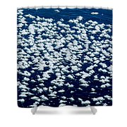 Frost Flakes On Ice - 28 Shower Curtain