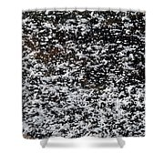 Frost Flakes On Ice - 29 Shower Curtain
