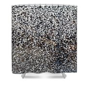 Frost Flakes On Ice - 14 Shower Curtain
