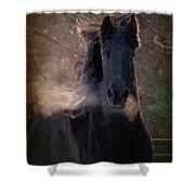 Frost Shower Curtain by Fran J Scott