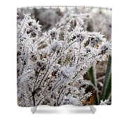Frost In The Field Shower Curtain