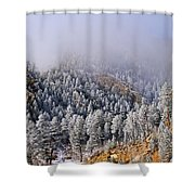 Frost On Cat's Feet Came Shower Curtain