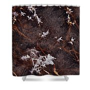 Frost Plumes Shower Curtain