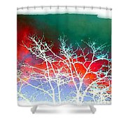 Frost Shrouded Tree Shower Curtain