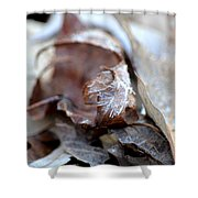 Frostcicles Shower Curtain