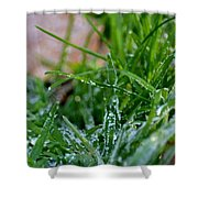 Frosted Dew Shower Curtain