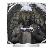 Frosted Stone Angel Shower Curtain