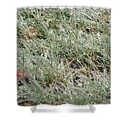 Frosted Grass Shower Curtain