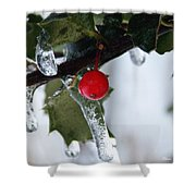 Frosted Holly Shower Curtain