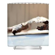 Frosted Leaf Abstract Shower Curtain