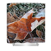 Frosted Leafs Shower Curtain