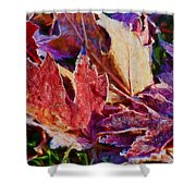 Frosted Leaves #2 - Painted Shower Curtain