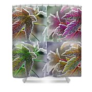 Frosted Maple Leaves In Warm Shades Shower Curtain