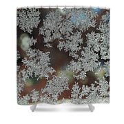 Frosted Window Shower Curtain