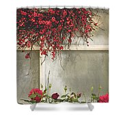 Frosted Windowpane Shower Curtain