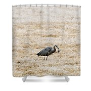 Frosty Dinner Shower Curtain by Mike  Dawson