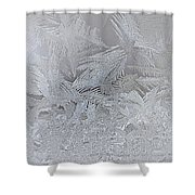 Frosty Dreams Shower Curtain