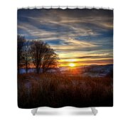 Frosty Grasses Shower Curtain