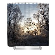 Frosty Morn 3 Shower Curtain