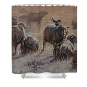 Frosty Morning Shower Curtain by Mia DeLode