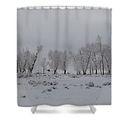 Frosty Morning Tree Line Shower Curtain