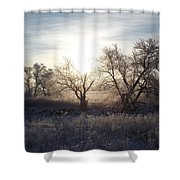 Frosty Rise Shower Curtain