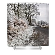 Frosty Road Shower Curtain