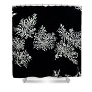 Frosty Snowflakes Shower Curtain
