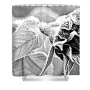Frosty Textures Shower Curtain