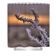 Frosty The Twig  Shower Curtain