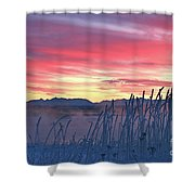 Frosty Winter Sunrise Shower Curtain