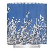 Frosty Winter Wonderland 01 Shower Curtain