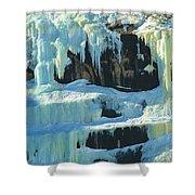 Frozen Artwork Shower Curtain