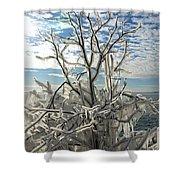 Frozen Backlight Shower Curtain