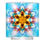 Frozen Clarity Shower Curtain