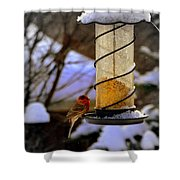 Frozen Feeder And Disappointment Shower Curtain