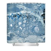 Frozen Fish Of The Northern Forests Shower Curtain