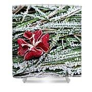 Frozen Flower Shower Curtain