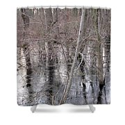 Frozen Forest Floor Shower Curtain