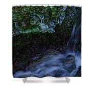 Frozen Garden Stream Shower Curtain