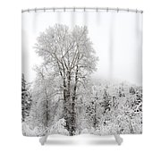 Frozen Giant Shower Curtain