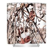 Frozen Harvest Shower Curtain