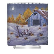 Frozen In Time Shower Curtain