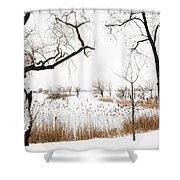Frozen Marshland IIi Shower Curtain