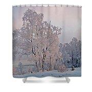Frozen Moment Shower Curtain