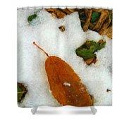 Frozen Nature - Digital Painting Effect Shower Curtain