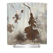 Frozen Oak Leaf Abstract Nature Detail Shower Curtain