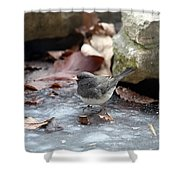 Frozen Pond Shower Curtain