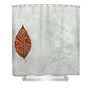 Frozen Seasons Shower Curtain